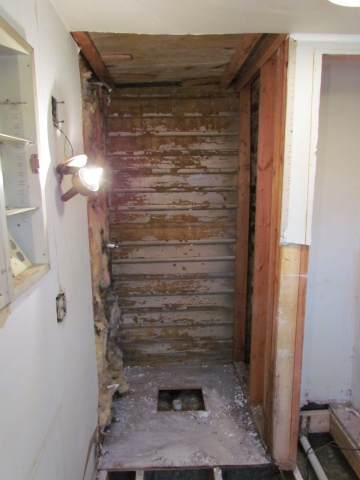 Historic Renovation Before And After shower before
