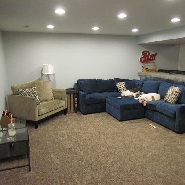 Masculine Transitional Finished Basement main image